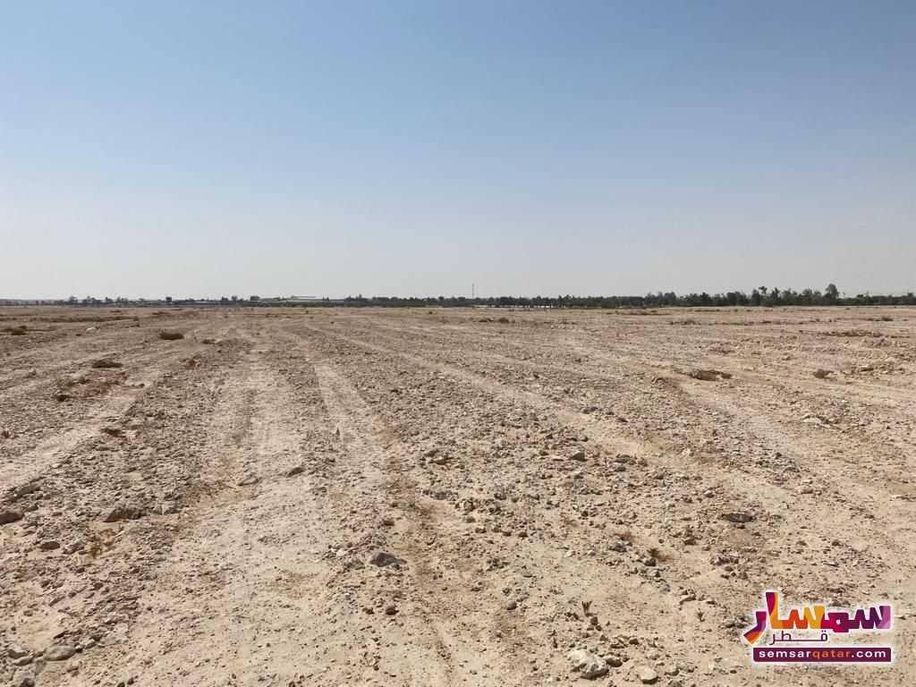 Ad Photo: LAND FOR RENT AT MEKAINES in Industrial Area  Ar Rayyan
